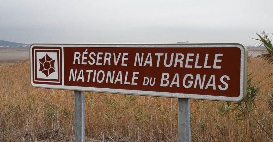 Des élèves de 6è à la réserve naturelle du Bagnas…3, 2, 1, biodiv go !